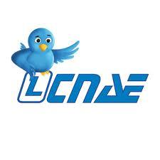 CNAE /  CCAE 45